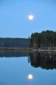 Luna riflessa in acqua
