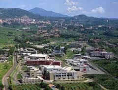 Frascati1