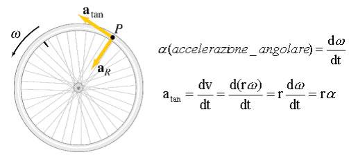 circolare7
